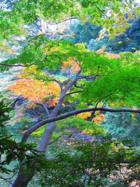Seasons (4)